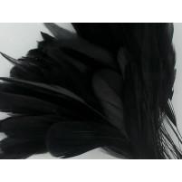 Antenna strip Black