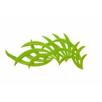 Bamboo motif Lime