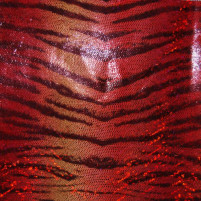 Bengal Flame Skin Red Holo