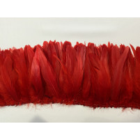 Coque feather
