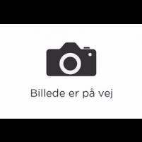 Gul Tyl