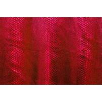 Cobra flamenco på burgundy