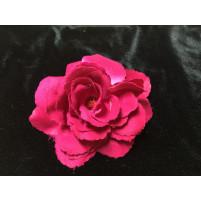 Royal rose Fuchsia
