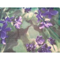 Blå og grønne Iris Orchids