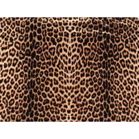 Animal print Stretch net
