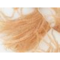 Ostrich feather fringe Cappuccino