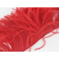 Ostrich feather fringe Red