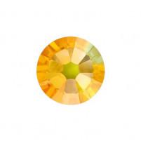 Sunflower Ab